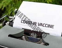 La comunicazione d'emergenza post pandemia: un vaccino per l'infodemia